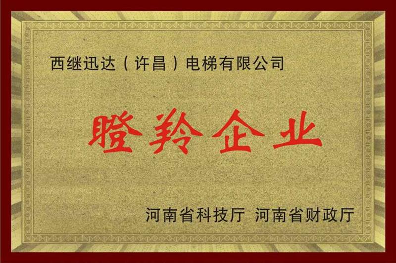 河南省瞪羚企业
